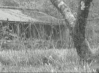 katharina-klewinghaus-nameless-12